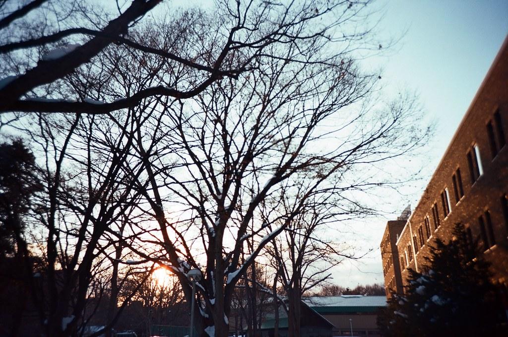北海道大學 札幌 北海道 Sapporo, Japan / Kodak Pro Ektar / Lomo LC-A+ 留下一點點的太陽,留下一點點的溫暖。  因為都帶走後,在那個超級寒冷的北方,很難走下去。  Lomo LC-A+ Kodak Pro Ektar 100 8267-0031 2016-01-31 ~ 2016-02-02 Photo by Toomore