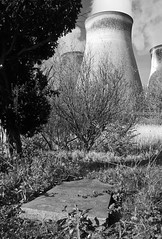 St Andrew's churchyard 2