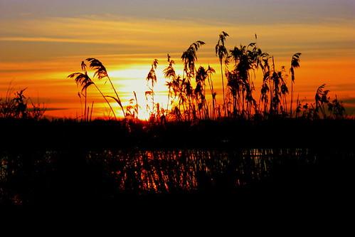 Sonnenuntergang in Rostock 07