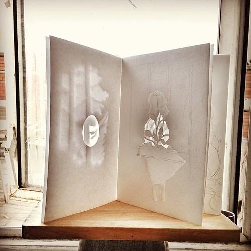 Die-cut book