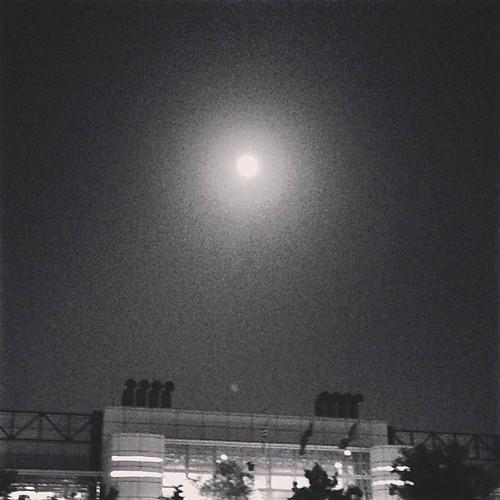 Summer solstice #ejksummer2013