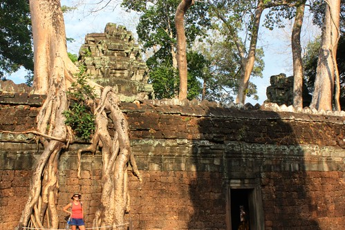 overgrown around the wall of Ta Prohm