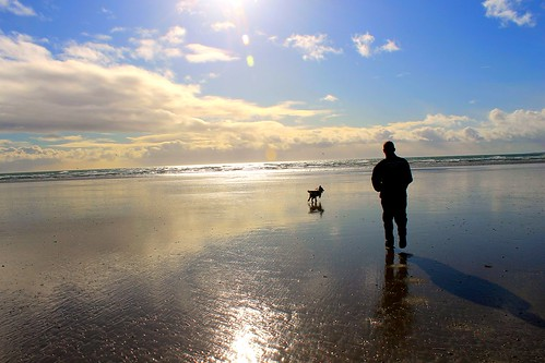 Dog and owner on Ballykinler Beach