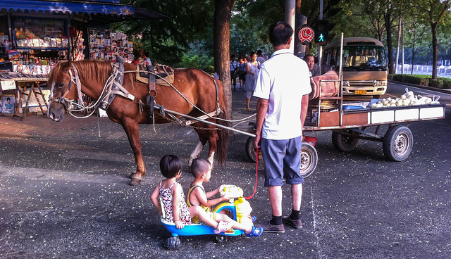 Horse. Cart. Baby Carriage.