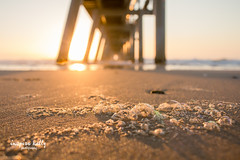 Beach bubble bokeh