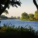 El río que ya no se ve más por javiabed