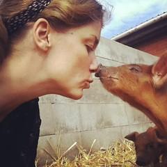 Älskade, älskade vän. Jag kommer aldrig någonsin att äta dig. ❤ #vadveganerinteäter