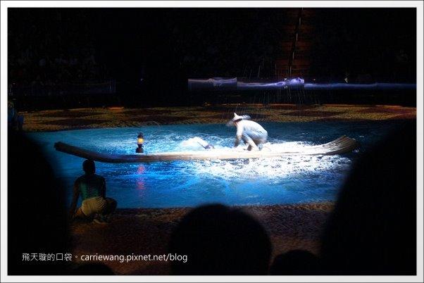 Dancing Water (30)