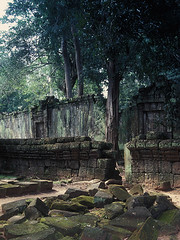 Ta Prohm - Outer Wall