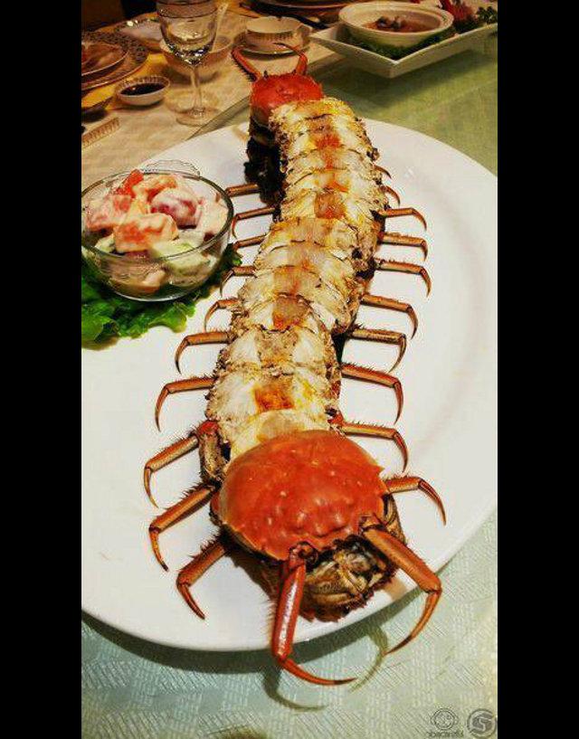 crab-centipede
