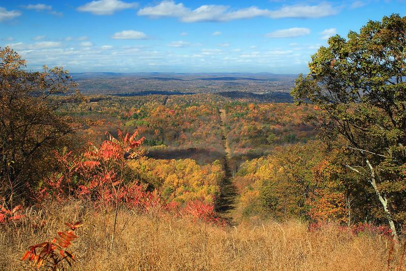 Appalachian trail in fall