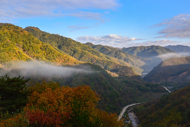Fall Foliage in Gangwon Province, Korea