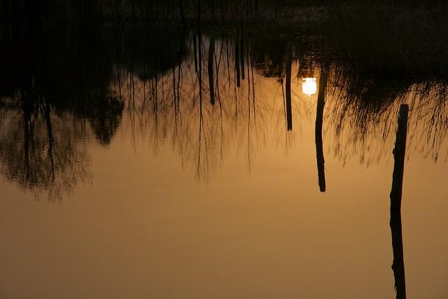 写真_陽が沈む朝