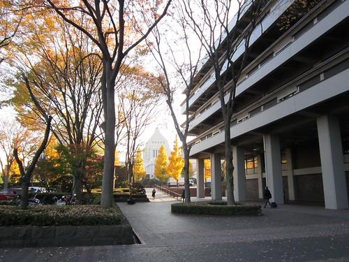 国立国会図書館と国会議事堂 2013年12月6日 by Poran111