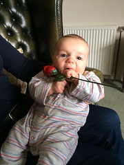 Valentines day boy