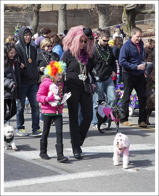 Barkus Parade 2014-02-23 8