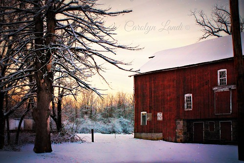 trees winter sunset red sky snow cold barn pennsylvania seasonal scenic pa snowing snowfall allentown lehighvalley