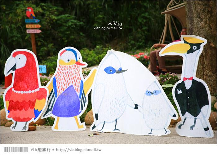 【新竹景點推薦】森林鳥花園~親子旅遊的好去處!在森林裡鳥兒與孩子們的樂園19