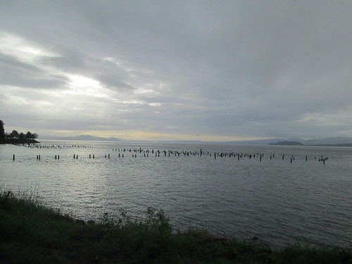 Early morning Columbia River