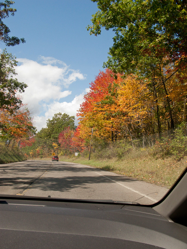 Fall foliage on our drive up to Niagara Falls