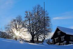 Wildhaus - Switzerland