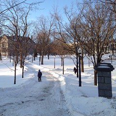 Kudos to #queensu PPS! They did a great job digging us out today! #onstorm #ygk