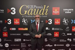 Catifa vermella VII Premis Gaudí (85)