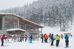 Fresh snow to start off February on Blackcomb
