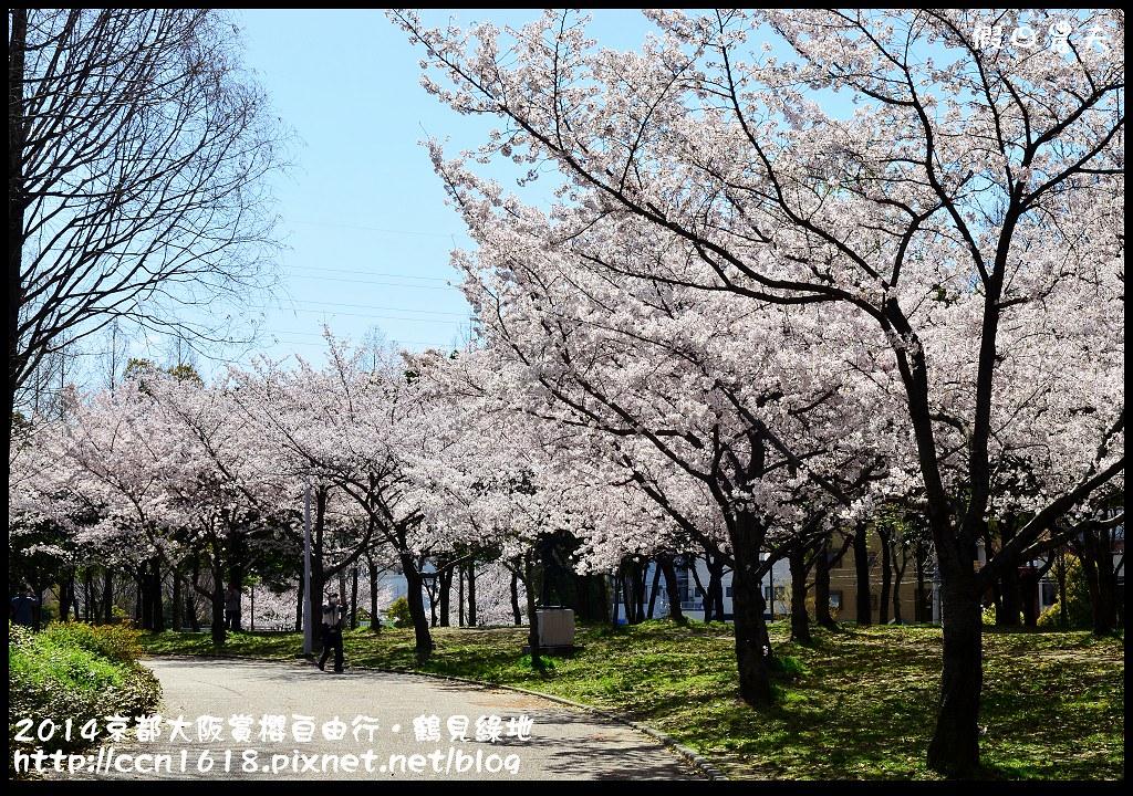 2014京都大阪賞櫻自由行.鶴見綠地DSC_1324