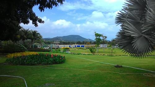 今日のサムイ島 2月17日 またもエッセンシャルオイル探し-レモングラスハウス空港閉店
