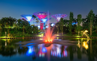 _MG_5560_web - Singapore Gardens by the Bay at night