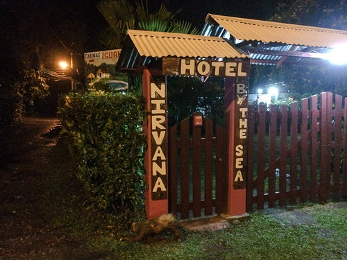 Cahuita: un paresseux tout mouillé devant l'entrée de notre hôtel