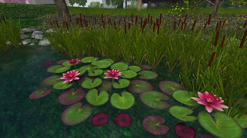 Mesh Waterlilies and Cattails from Botanical