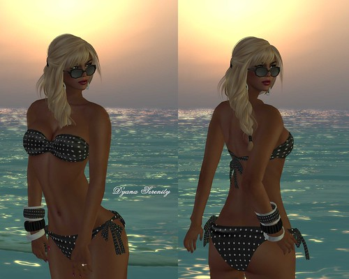 Stop paparazzi by Dyana Serenity Blogger Second Life *Thanks to all
