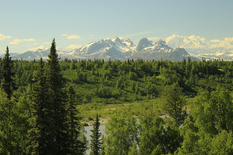 Under the Shadow of Denali