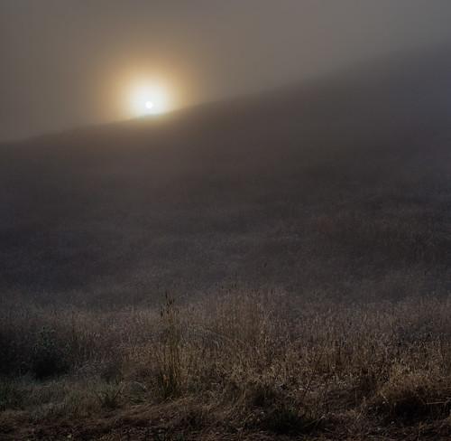 california ca sun nature northerncalifornia fog sunrise landscape photography prime photo nikon voigtlander photograph bayarea 40mm mounttamalpais mttamalpais voigtlander40mm kevinmacleod d800e nikond800e unrangedcom