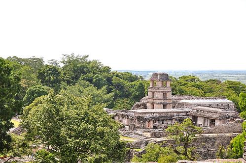 Palenque (25)