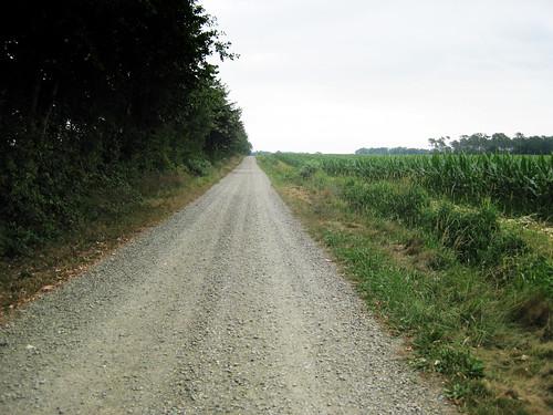 Camino 2009