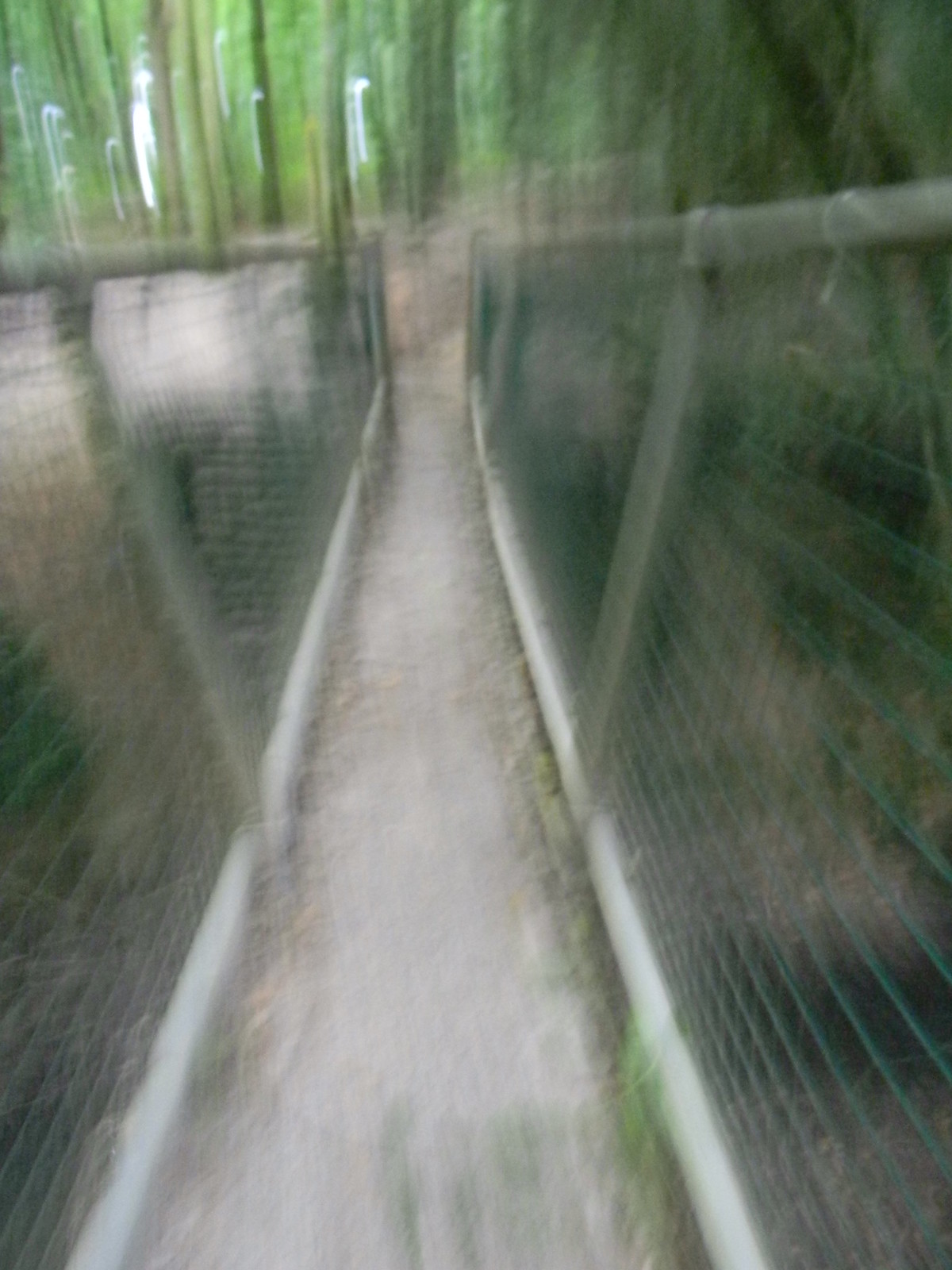 Bridge Wadhurst Circular