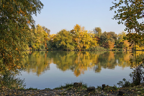 autumn fall nature water leaves reflections river landscape hungary budapest duna danube xxi donau csepel 550d