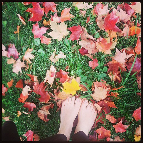 Favorite season of all. #autumn