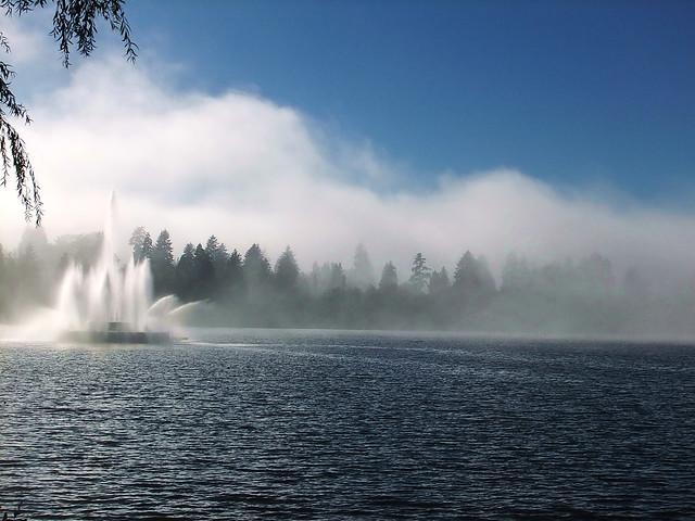 Dancing Mists