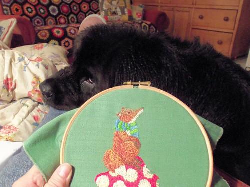 Daisy hates stitching!!
