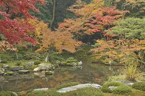 【写真】紅葉 : 南禅院