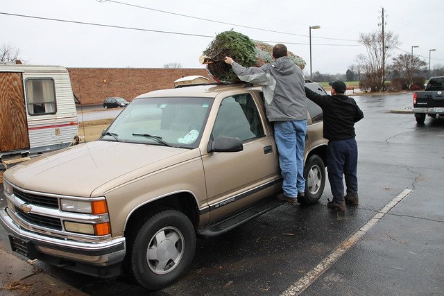 Loading up our tree