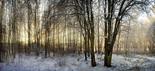 winter panorama snow suomi finland talvi tampere