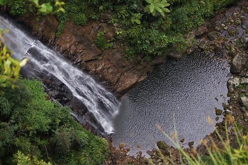 waterfall nationalpark australia waterfalls qld binnaburra lamingtonnationalpark coomera