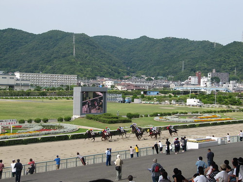 Himeji Racecourse 姫路競馬場の内馬場のかつての様子
