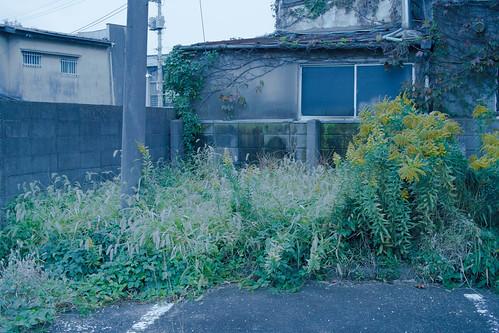 阿佐ヶ谷住宅-1