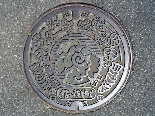 Shinshushin Nagano, manhole cover ( 長野県信州新町のマンホール)